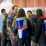 Winter Hall - Red Bull Wings